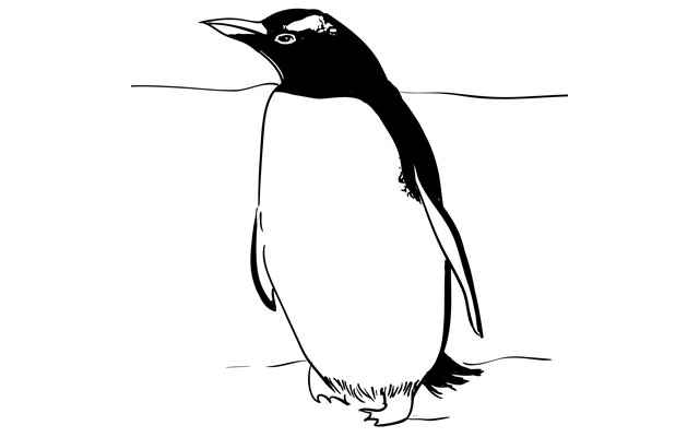 Sketchbook Challenge 46 – How to Draw a Penguin